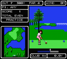 Lee Trevino's Fighting Golf 4