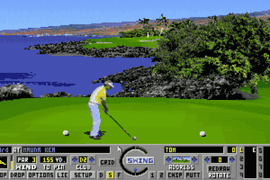 Links: Championship Course - Mauna Kea 11