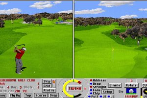 Links LS: Championship Course - Valderrama 11