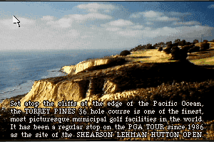 Links: The Challenge of Golf abandonware