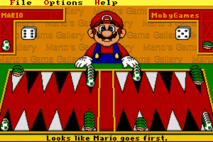 Mario's Game Gallery 21