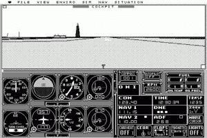 Microsoft Flight Simulator abandonware