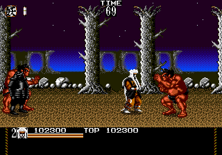 Mystical Fighter 16