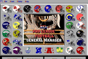 NFL Pro League Football 0