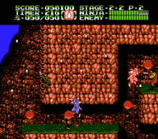 Ninja Gaiden II: The Dark Sword of Chaos 14