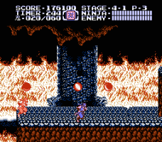 Ninja Gaiden II: The Dark Sword of Chaos 21