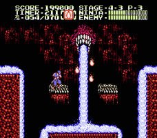 Ninja Gaiden II: The Dark Sword of Chaos 24