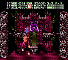 Ninja Gaiden II: The Dark Sword of Chaos 28