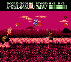 Ninja Gaiden II: The Dark Sword of Chaos 30