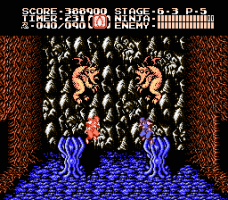 Ninja Gaiden II: The Dark Sword of Chaos 31