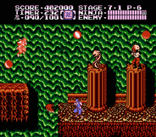 Ninja Gaiden II: The Dark Sword of Chaos 32