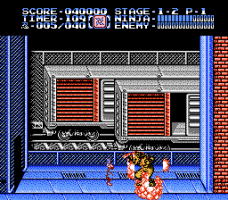 Ninja Gaiden II: The Dark Sword of Chaos 8