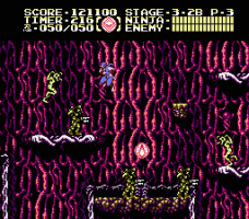 Ninja Gaiden III: The Ancient Ship of Doom abandonware