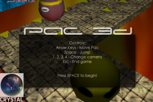 Pac 3D abandonware