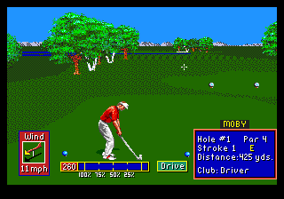 PGA Tour Golf II 13