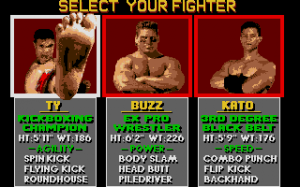 Pit-Fighter 6