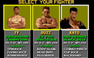 Pit-Fighter 7