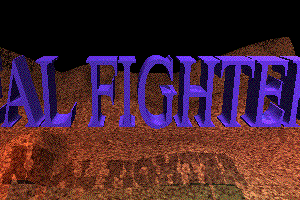 Real Fighter 1