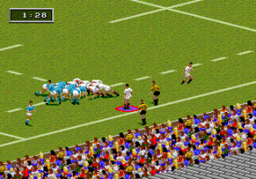 Rugby World Cup 95 abandonware