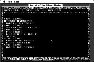 Secret of the Silver Blades 6