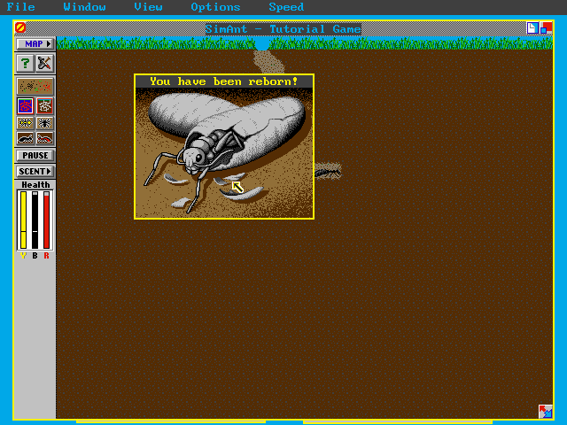 Download SimAnt: The Electronic Ant Colony - My Abandonware