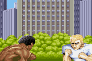 Street Fighter II: The World Warrior 0