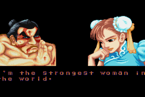 Street Fighter II: The World Warrior 9