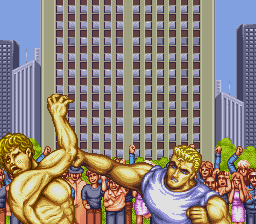 Street Fighter II: Champion Edition 23