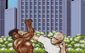 Street Fighter II 0