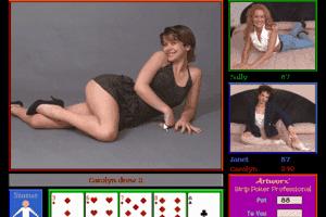 Video Poker Professional