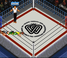 Super Fire Pro Wrestling Queen's Special 11