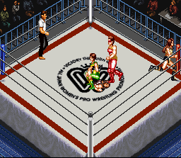 Super Fire Pro Wrestling Queen's Special 14