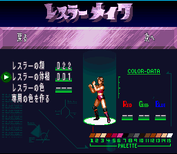 Super Fire Pro Wrestling Queen's Special 3