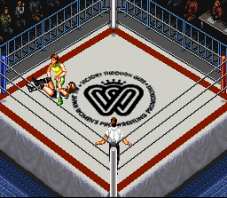 Super Fire Pro Wrestling Queen's Special 8