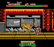 Teenage Mutant Ninja Turtles: Tournament Fighters 13
