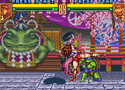 Teenage Mutant Ninja Turtles: Tournament Fighters 24