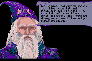 The Adventures of Maddog Williams in the Dungeons of Duridian 2