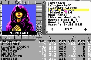 The Bard's Tale III: Thief of Fate 8