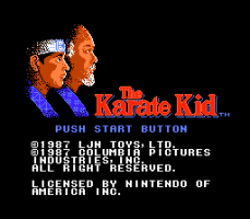The Karate Kid 0