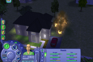 The Sims 2: FreeTime 3