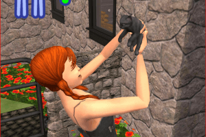 The Sims 2: Pets abandonware