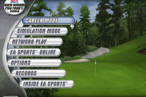 Tiger Woods PGA Tour 2004 0