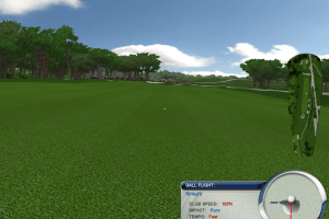 Tiger Woods PGA Tour 2004 16