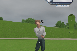 Tiger Woods PGA Tour 2004 19