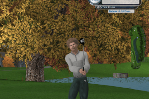 Tiger Woods PGA Tour 2004 6