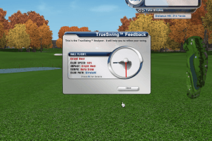 Tiger Woods PGA Tour 2004 7