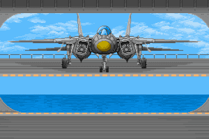 Top Gun: Danger Zone abandonware