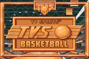 TV Sports: Basketball 4