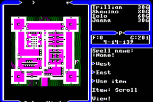 Ultima V: Warriors of Destiny 10