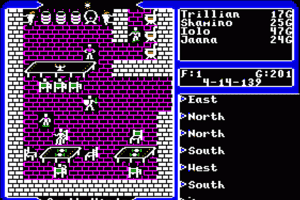 Ultima V: Warriors of Destiny 14